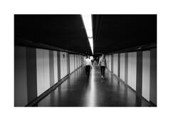 Barcelona (Koprek) Tags: konicahexaraf film analog 135mm barcelona streetphotography stphotographia stphotography street spain october 2019 kodaktrix 400