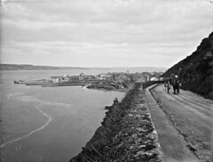 Passage (National Library of Ireland on The Commons) Tags: ahpoole arthurhenripoole glassnegative nationallibraryofireland passageeast cowaterford piers ferry duncannon crook hook poolephotographiccollection