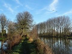 Chemin au fil de la Houlle à Houlle. (daviddelattre) Tags: eau ciel bleu nuage arbre oiseau photo paysage nature chemin reflet