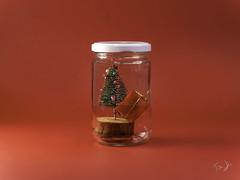 conservare il Natale.. 🎄 (Antonio Iacobelli (Jacobson-2012)) Tags: christmas conserve red tree keep bari fujifilm fujinon 120mm macro