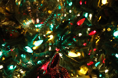 Christmas Lights Background 1778 (casch52) Tags: christmas winter tree background decoration holiday celebration design xmas december new star year merry season fir shiny green happy ornament gold pine festive card seasonal red golden gift bright beautiful isolated vector traditional ball illustration decorated element present sparkle abstract spruce decorative light party greeting garland white nature