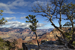 Afternoon delight (BDFri2012) Tags: grandcanyon grandcanyonnationalpark nationalpark arizona trees clouds landscape americansouthwest southwestunitedstates desertsouthwest canyon