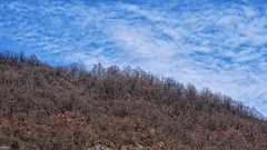 Blue cloudy sky (Poria) Tags: nature landscape view iran persia sky blue cloud jungle forest autumn mountain