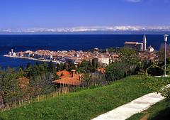 Piran (Vid Pogacnik) Tags: slovenia slovenija travel piran adriatic town panorama