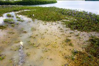 Bahamas Bonefishing Lodge - Abaco Island 43