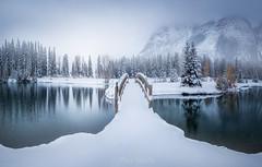 Felices fiestas (el_farero) Tags: snow rockies canada nieve landscape paisaje panoramica