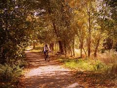 El otoño de Quel (kirru11) Tags: otoño camino viaverde paisaje ciclista gente árboles hojas campo hierba bancos cielo quel larioja españa kirru11 anaechebarria panasonicdmcfx7