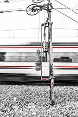 Una vez alguien me dijo que el tren pasa una sola vez en la vida. (Elena m.d. 12.7M views.) Tags: train tren ferrocarril monocromo 2019 nikon d7500 tokina1116mm street