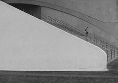 _ _ _    downstairs  _ _ _ (christikren) Tags: architecture abstract architektur blackwhite christikren auditorio santacruzdetenerife tenerife canaryislands canonpowershotg5x candid man human stairs architectsantiagocalatrava monochrome mono one building spanien teneriffa modernbuilding atlanticocean portofsantacruz art street mosaic spain