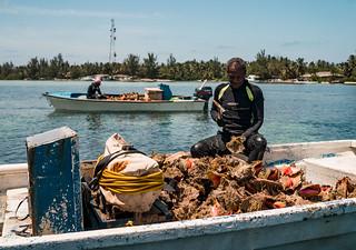 Bahamas Bonefishing Lodge - Abaco Island 83