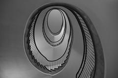 Beauty (Elbmaedchen) Tags: staircase treppenhaus escaleras escaliers roundandround interior upanddownstairs blackandwhite schwarzweis oval steps stufen