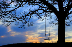 Swing at Sunset, Burrow, South Somerset (M.T.A.V) Tags: exposure canon canoneos750d canon750d calm peaceful relaxing cold sky clouds cloud tree trees contemplative swing silhouette burrowhill hill south somerset photography photograph atmosphere atmospheric winter sunset efs1855mm england englishcountryside evening eveninglight lonely lonelytree soft bare orange thinking thoughtful contemplate