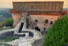 Vestige du passé (Armelle85) Tags: extérieur nature paysage donjon château architecture passé histoire muraille