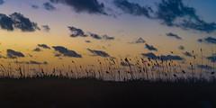 SouthPadreIsland_465 (allen ramlow) Tags: south padre island texas tx sunrise landscape seascape clouds water beach sand gulf coast sony alpha
