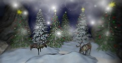The Best Christmas Tree (*kAmmieAnn*) Tags: facedesk secondlife thesenseevent homegarden landscape landscaping landscapedesign exclusive sale originalmesh christmas holiday