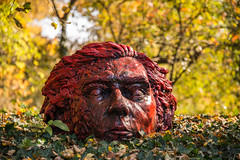 Lose your mind (damianf5088) Tags: head red redhead sculpture nature botanical garden landscape sigma art 24105 nikon d610 fx outdoor outside
