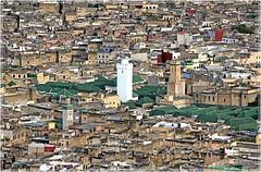 Vue sur la médina et quelques une des ses 350 mosquées (philippedaniele) Tags: maroc fès feselbali médina mosquées