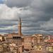 Italy - Siena - view from Orto Dei Tolomei