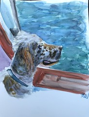 English Spaniel Boat (korawaters) Tags: english springer spotted working dog beach water coast boat boating pets pet watercolor art artwork painting painter seascape sea mans best friend artist