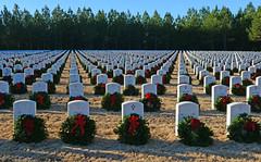 Georgia National Cemetery (davidwilliamreed) Tags: wreathsacrossamerica veterans cemetery tombstones graves christmaswreaths georgianationalcemetery cantonga cherokeecounty