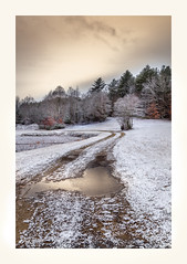 Just A Dusting (windshadow2) Tags: 6d winter path snow tree snowy canon sky light winding rural road usa