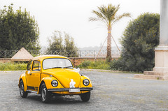 Two rings and a yellow beetle (catrall) Tags: italy italien rome rom roma italia nikon d750 fx dslr sigma lens art 24105 city stadt ancient wedding marriage ehe hochzeit ring rings yellow car vw volkswagen vwbettle bettle