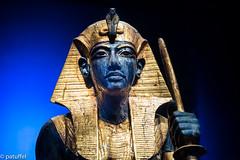 Guardian Statue of Tutankhamun (patuffel) Tags: tutankhamun saatchi gallery london exhibition 2019 wooden guardian statue nemes headcloth king ka egypt egyptian royal tomb leica m10 50mm summicron