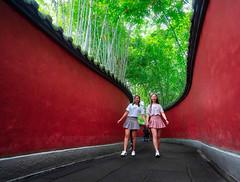 Chengdu Walk (Trey Ratcliff) Tags: chengdu china stuckincustomscom treyratcliff skylum competition contest trees
