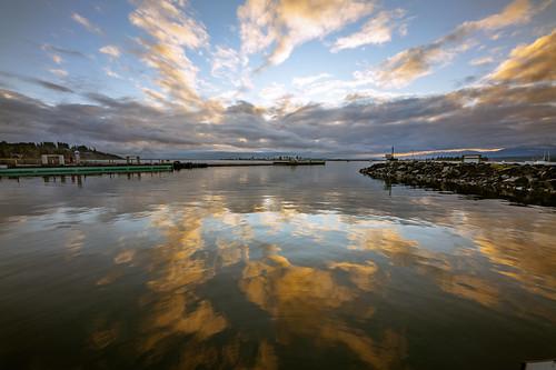 Comox Harbor Reflection
