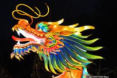 Dragon (Trish Mayo) Tags: dragon winterlanternfestival snugharbor statenisland notrealanimals