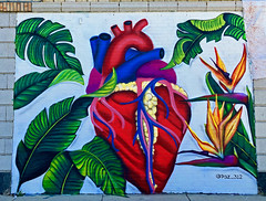 Jungle Heart by Paz312 (wiredforlego) Tags: graffiti mural streetart urbanart aerosolart publicart chicago illinois ord logansquare paz312 christianpaz