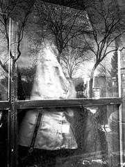Une belle journée pour sortir dehors... (woltarise) Tags: montréal plateaumontroyal quartier ricohgrdigital3 intérieurextérieur soleil boiseries fenêtre arbres manteau rues reflets