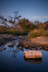 landscape with a log at sunset (Taema) Tags: crimea river log sunset