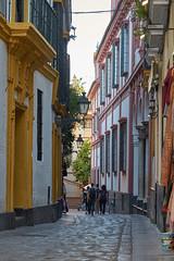 Alleys of Seville (AgarwalArun) Tags: sony a7m2 sonyilce7m2 landscape scenic nature views spain seville sevilla europe barriosantacruz santacruzquarter jewishquarter