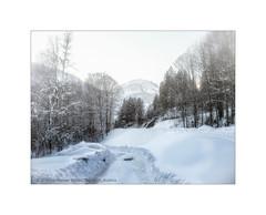 At Wintertime (My digital Gallery) Tags: winter au bregenzerwald vorarlberg austria eu europe mountains berge schneelandschaft snowy snow white path schnee alpen alpine alps landschaft landscape weis