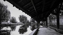 L'eau du lavoir (Un jour en France) Tags: lavoir eau rivière nature canoneos6dmarkii canonef1635mmf28liiusm eos noiretblanc noiretblancfrance black monochrome reflet