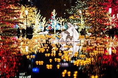 Nativity Scene in Reflection Pool (yorgasor) Tags: sony a7r4 a7riv sigma 105mm f14 art lds mormon temple nativity churchofjesuschristoflatterdaysaints jesus christmas lights 105mmf14dghsm|a
