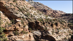_SG_2019_10_0704_IMG_6864 (_SG_) Tags: ferien reise travel trip roundtrip round usa america amerika us vereinigte staaten vereinigtestaaten west coast united states westcoastoftheunitedstates westcoast westküste zion national park utha springdale canyon navajo sandstone
