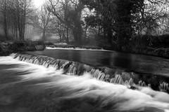 River Lathkill (l4ts) Tags: landscape derbyshire peakdistrict whitepeak alport riverlathkill lathkilldale waterfalls longexposure circularpolarisingfilter blackwhite monochrome fog trees