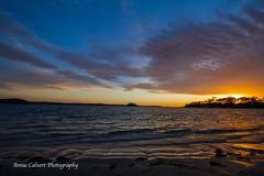 Corrigan Beach (Anna Calvert Photography) Tags: australia landscape outdoors scenery trees sunrise ocean water islands surf corriganbeach nature native australiannative