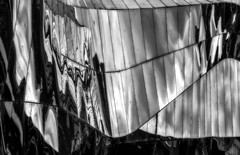 Reflective Cladding (photofitzp) Tags: abstract birmingham blackandwhite grandcentral shiny bw cladding station