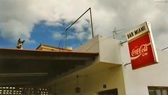 La Palma: doggie on the roof (Henk Binnendijk) Tags: sanandresysauces canaryislands spain lapalma island eiland île insel barmiami cocacolasign dog hond chien hund callesansebastian dogontheroof espagne espana spanje coke explore