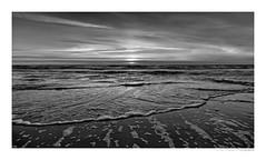 North Sea (herbert thomas hesse) Tags: nordsee meer wellen strand sw bw monochrome schwarz weiss dänemark wasser