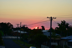 Setting sun (Dreaming of the Sea) Tags: sunset fencedfriday tamronsp2470mmf28divcusd nikond7200 sun powerlines powerpoles palmtrees redsunset hff