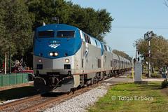 Amtrak (TolgaEastCoast) Tags: amtrak csx plant city florida train p091 silver star downtown p42dc