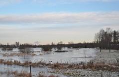 Tierp 19/12 2019. (johnerlandaxelsson@gmail.com) Tags: tierp uppland sverige vinter vatten natur landskap landscape