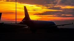 Indigo Airbus A320 VT-IDE Bangalore (BLR/VOBL) (Aiel) Tags: indigo airbus a320 vtide bangalore bengaluru canon60d tamron18400