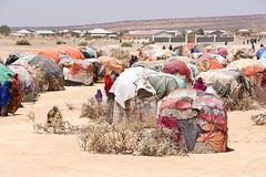 """""""IDP Camp Emergency response"""" by Faisal ABdi. (kalu Institute) Tags: kaluphotocontest2019 somalia idp drought africa shelter 2018 2019 camp hunger goodsecurity"""