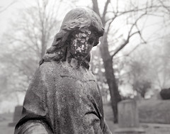 Cedar Lawn, Paterson NJ (Nesster) Tags: cemetery century graphic xenotar 8028 hp5 hc110