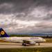 Lufthansa after bad weather landing at Frankfurt FRA